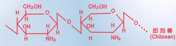 是利用几丁质精炼,并改善其分子结构而成.
